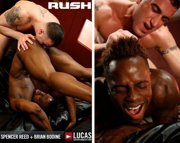 muscular black gay porn star Brian Bodine getting fucked by SpencerReed in RUSH