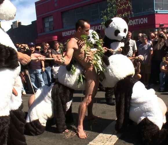 Gay Panda porno