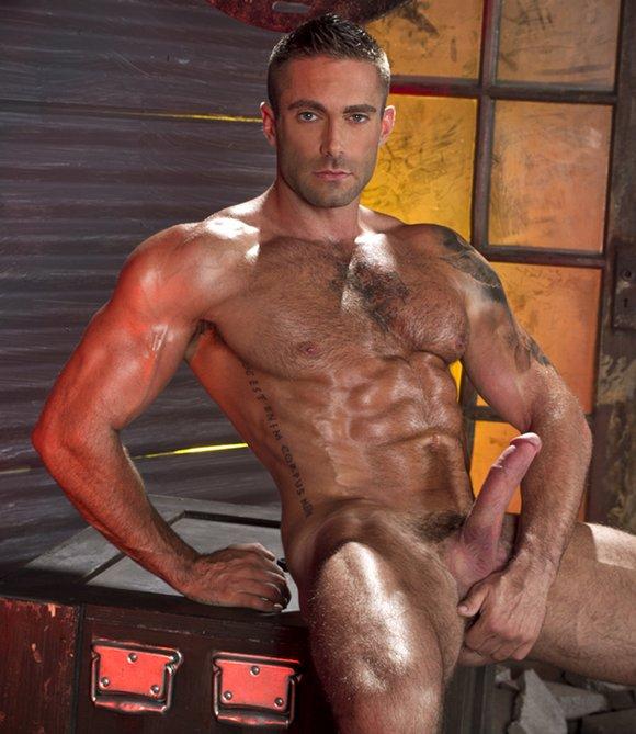 Gay porn stallion