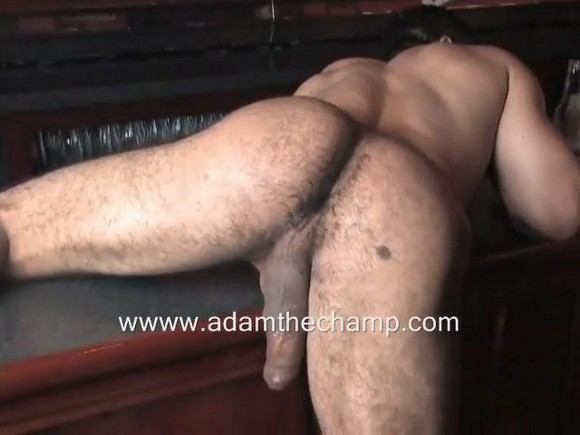 Adam Champ – Beer with Bear – Sexy Video Clip