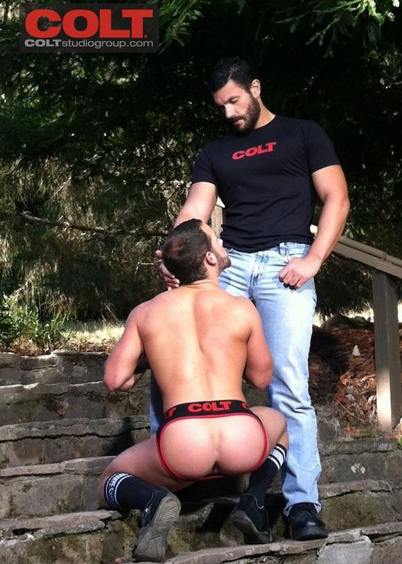 free gallery gay pic sex