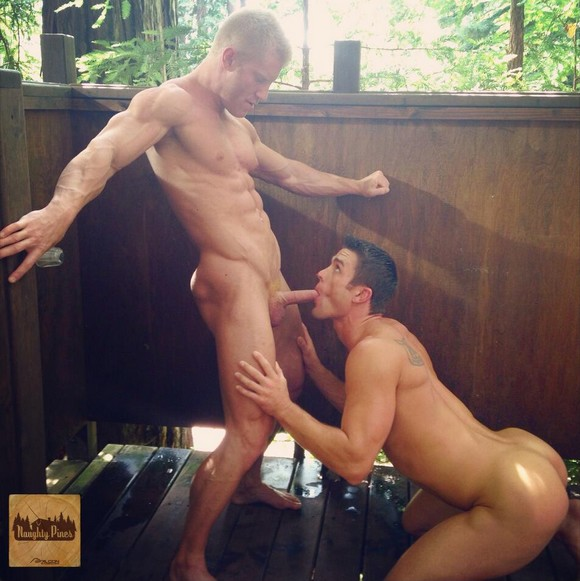 Johnny V Ryan Rose Gay Porn Falcon Naughty Pines