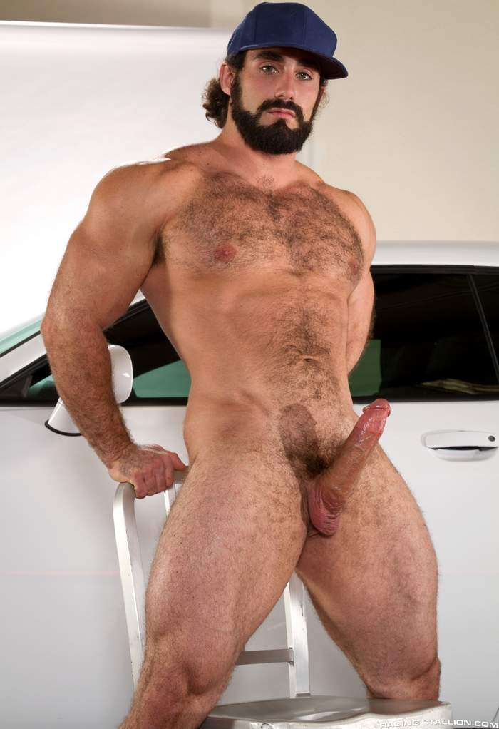 Hairy And Muscle