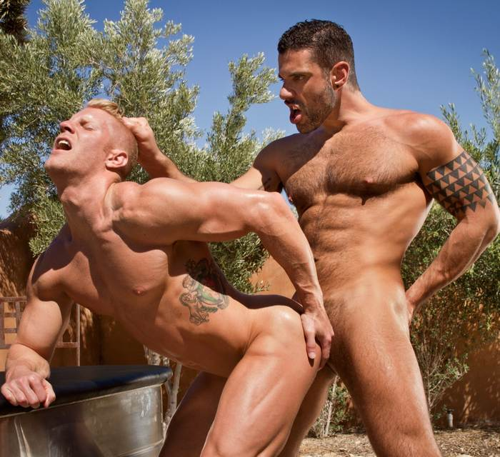 JohnnyV Letterio Amadeo Gay Porn Muscle Bodybuilder Sex
