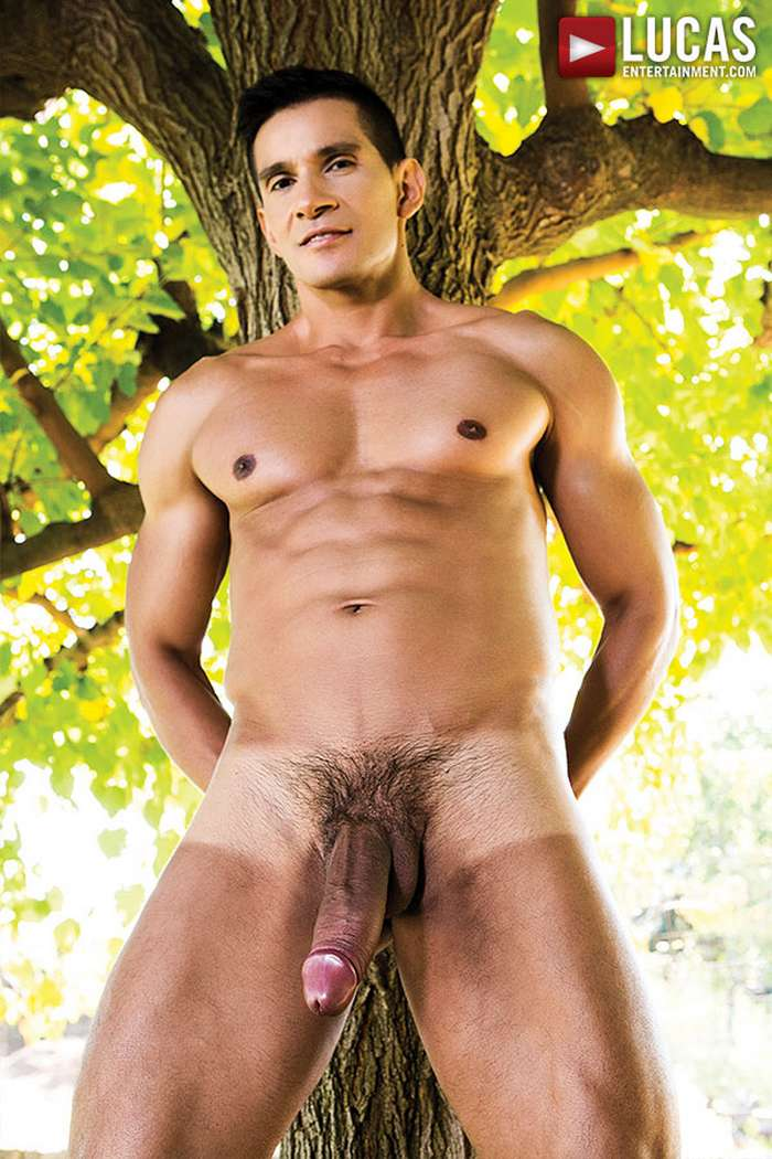 hairy nipples male twinks gay