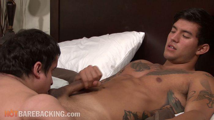 Gay Midget Rodeo Porn
