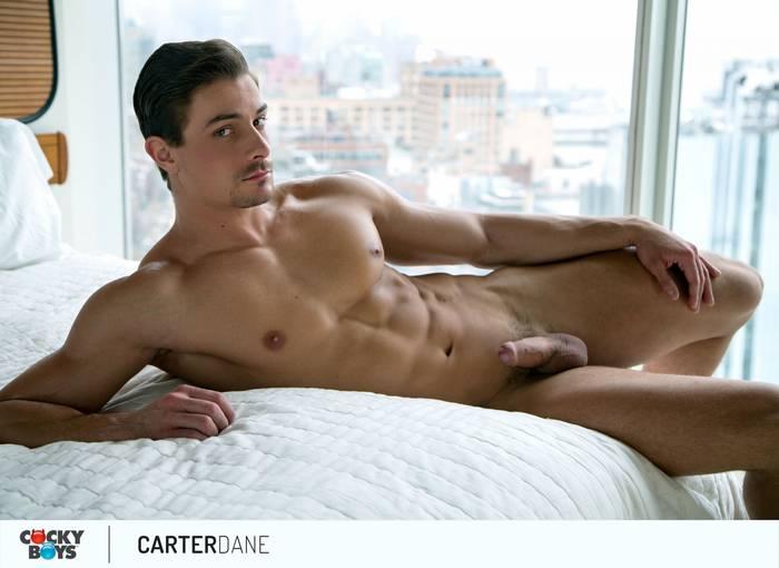 Carter Dane Gay Porn Star Muscle Bottom CockyBoys 2