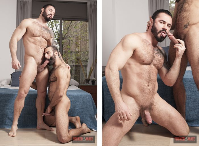 Paco, gay porn star