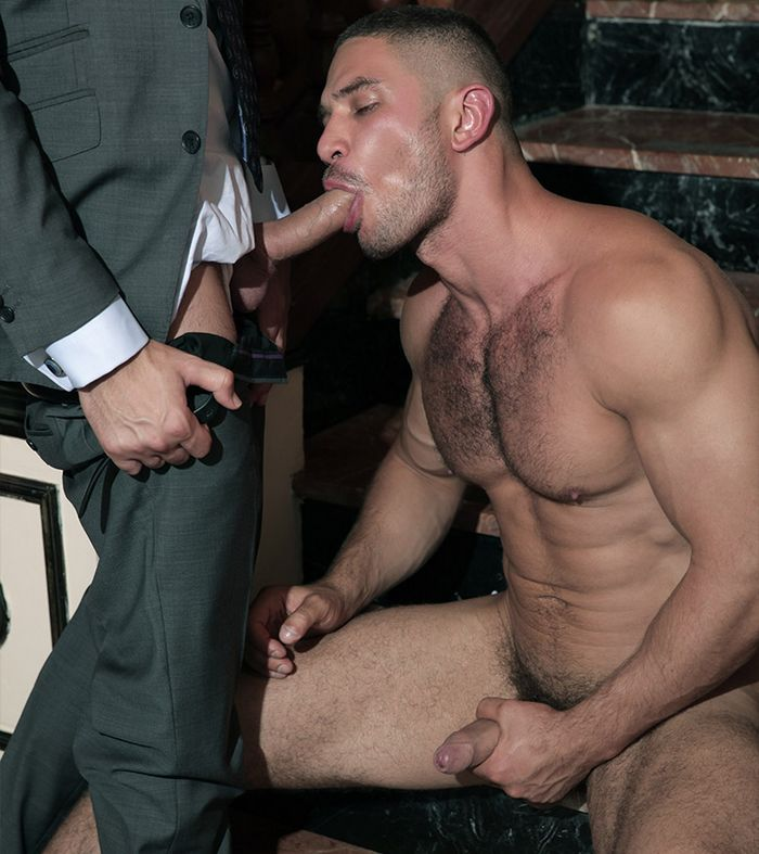 Dato foland spitroasted by muscular studs