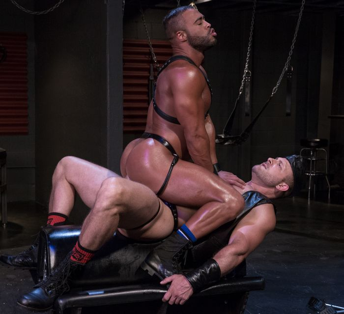 from Alvin gay muscle hunk movie
