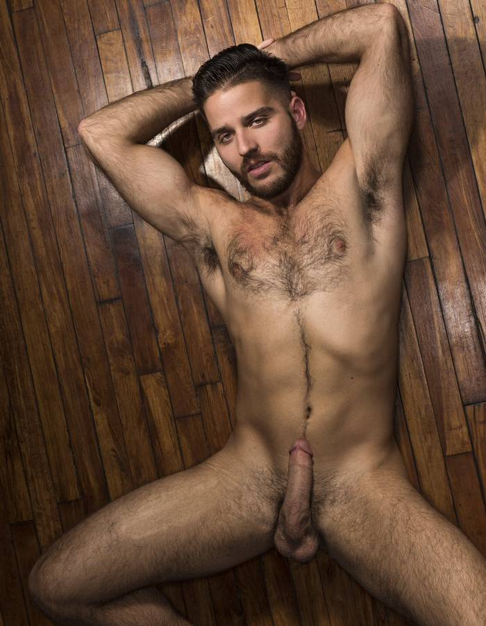 Useful piece Naked hairy male porn stars