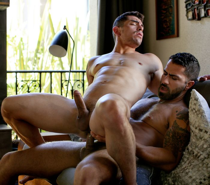 jeremy-spreadums-gay-porn-adam-ramzi-cockyboys-muscle-bottom