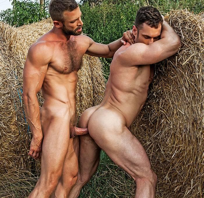 Schwule Sex-Muskel-Hunk