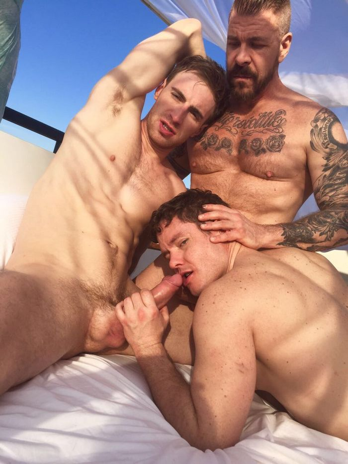 Kayden Gray Ashley Ryder Rocco Steele Gay Porn Tel Aviv Nakedsword