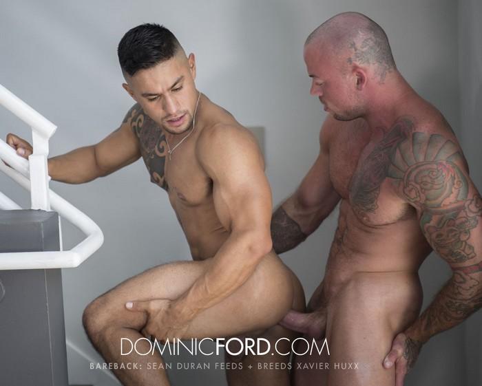 Xavier Hux Gay Porn Sean Duran Bareback Sex DominicFord
