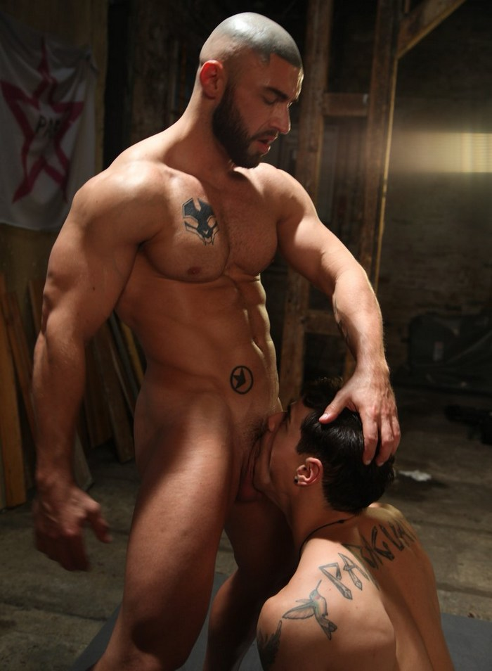 Francois Sagat Arad Winwin Levi Karter Gay Porn
