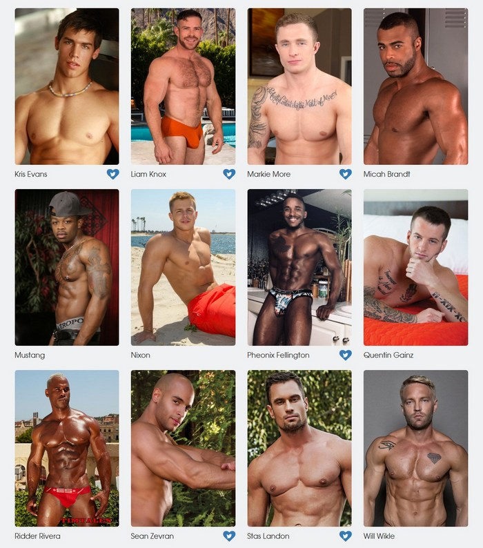 Gay Porn Stars GayVN Awards 2018 Favorite Body