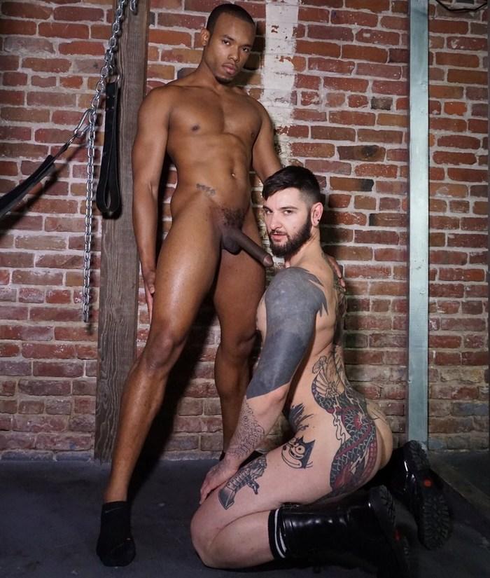 Gay Porn Teddy Bryce Timarrie Baker