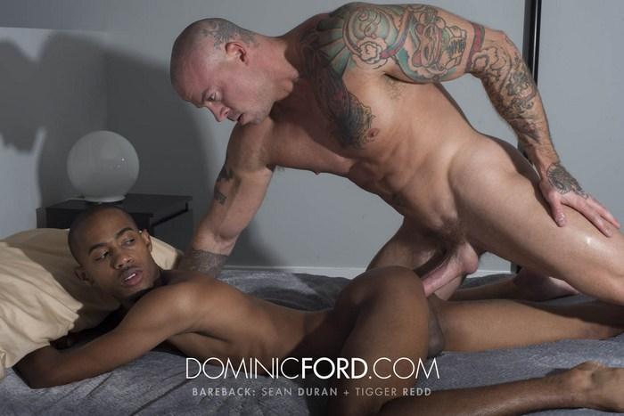redd gay porno gratis britisk ebony porno