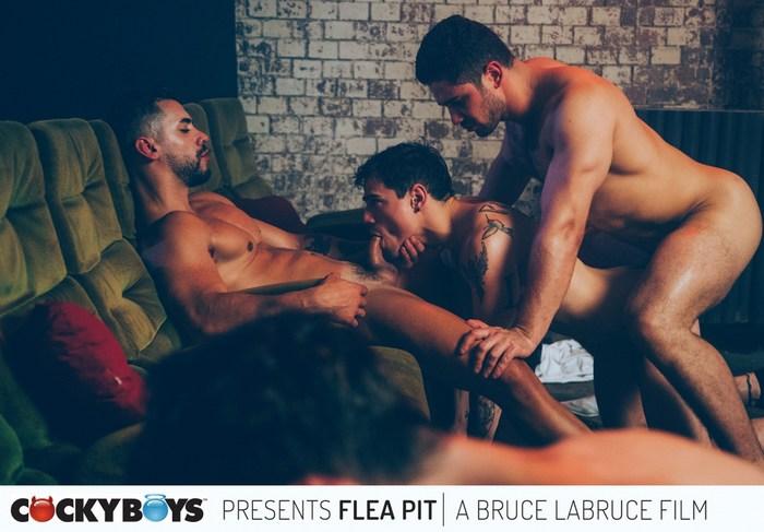 Flea Pit Gay Porn Orgy CockyBoys