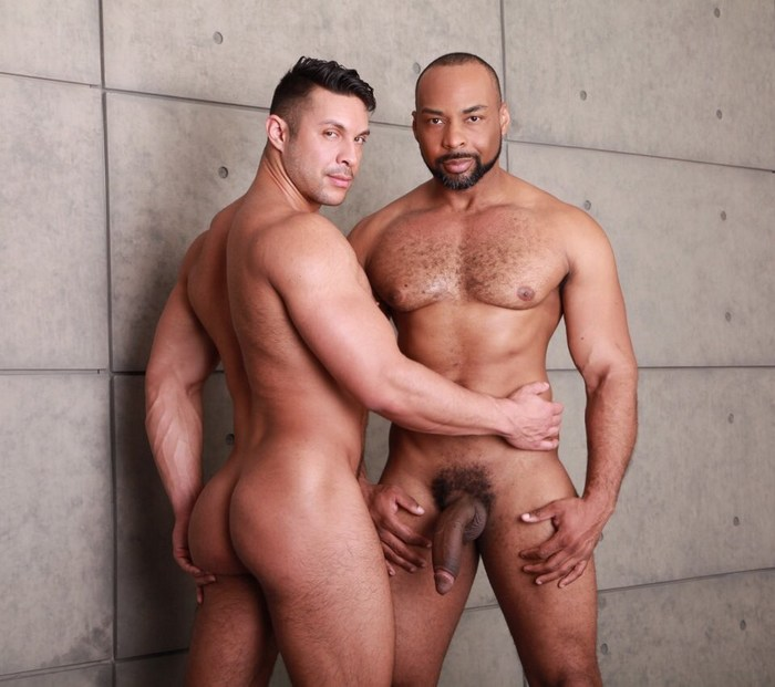 free young gay sex pictures