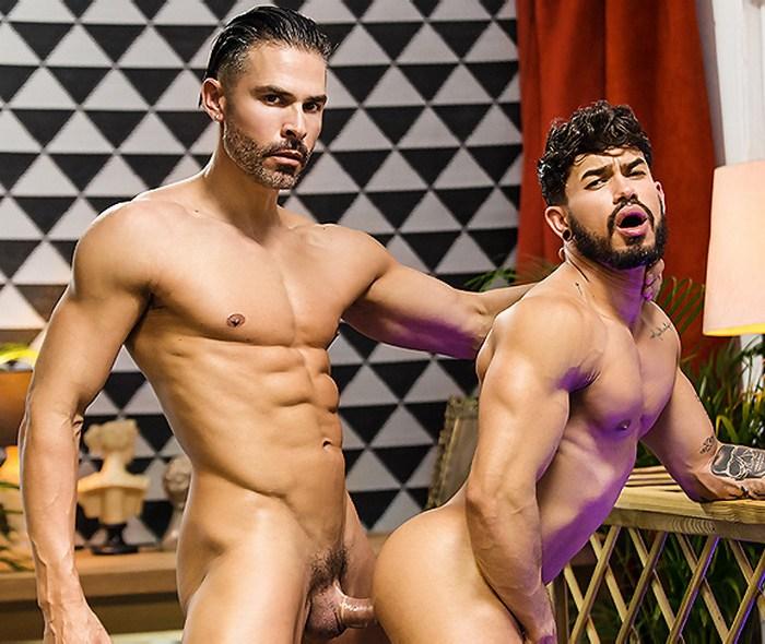 d. o gay porno star