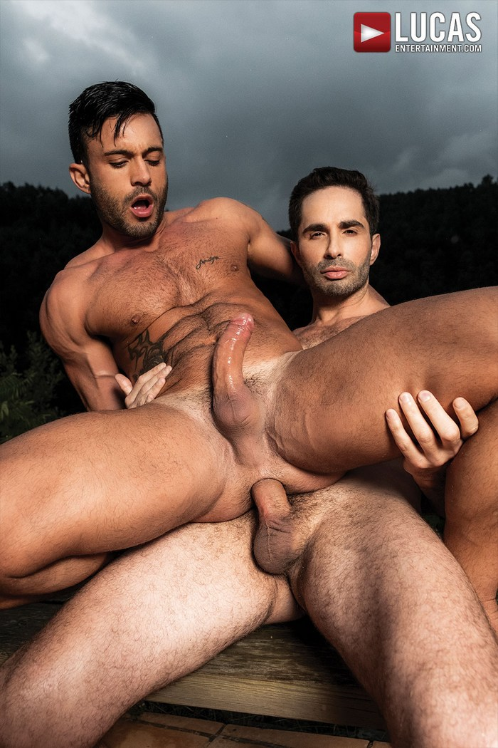 Schwule Porno-Star michael lucas