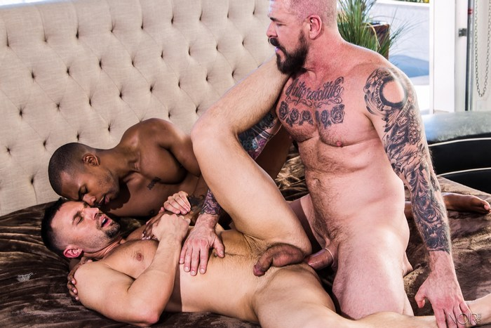 Nothing but the highest quality Gay Rocco Steele porn on