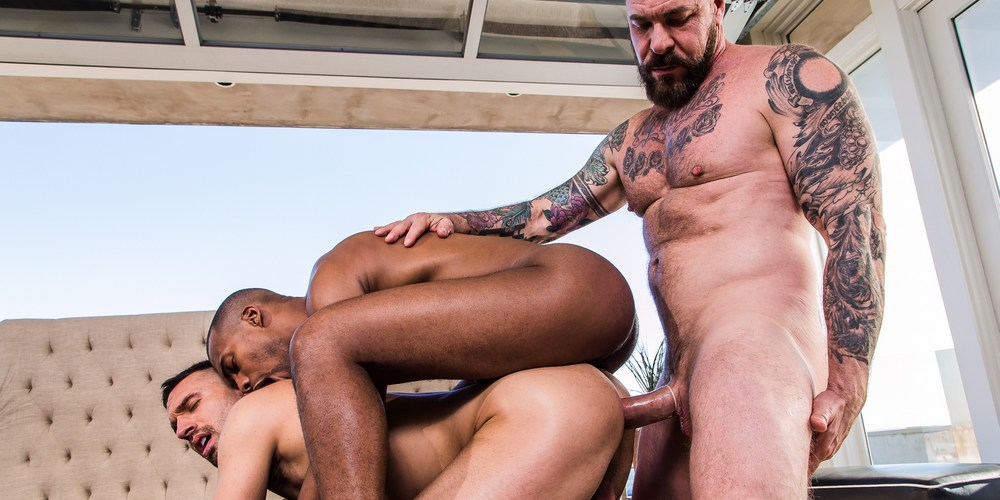 Tons of free Gay Rocco Steele porn videos and XXX