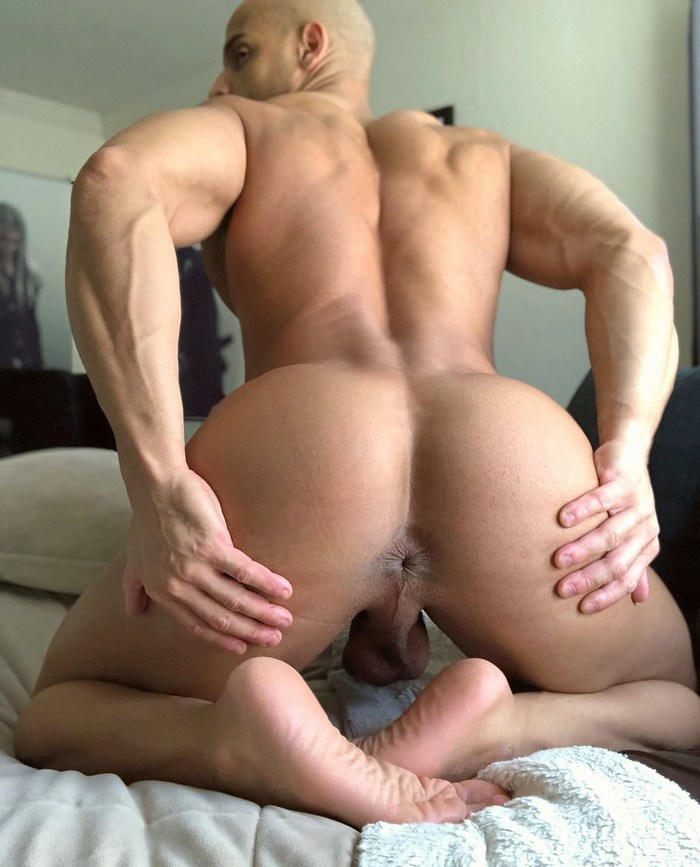 Sean Zevran Gay Porn Star Muscle Hunk Butt Hole
