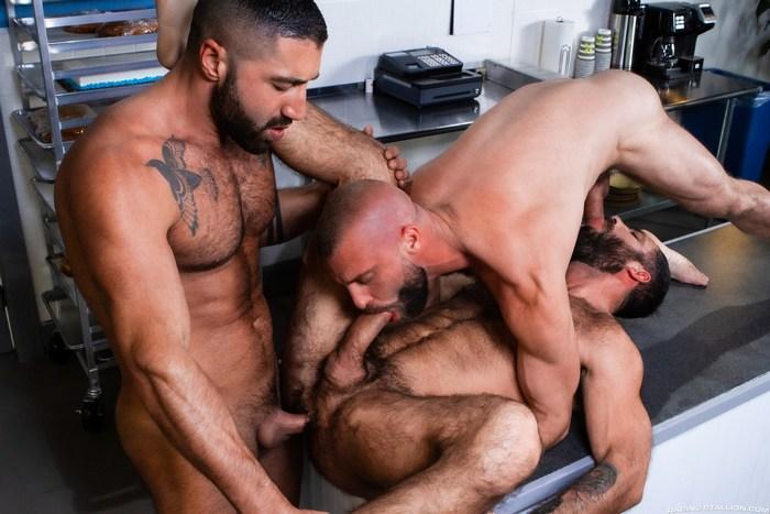 Gay Porn Sharok Donnie Argento Jake Nicola